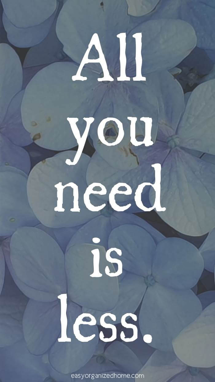 all you need is less #quote #quoteoftheday #quotestoliveby #quotesinspirational #motivation #motivationalquotes #inspirational #inspirationalquotes #inspirationalwords #organizationquotes #organization #declutteringquotes #decluttering #minimalist #minimalist #minimalistquotes