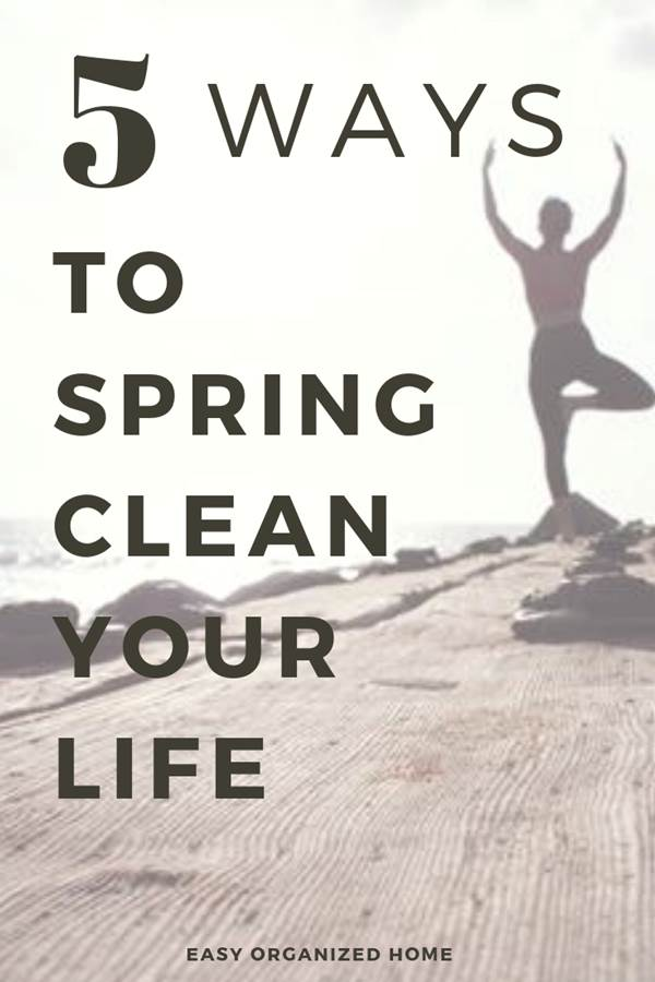 Spring is the perfect time for cleansing our life, re-energizing our bodies and breaking out of our old habits. Read now to learn how to spring clean your life and make the rest of this year your best year yet!#cleanselife #springclean #detox #declutter #cleanmind #springcleaning