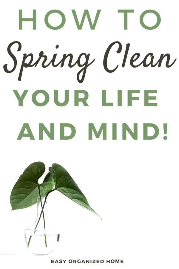 Need a life cleanse? It's time to spring clean your life! Here are my 5 best tips on how to about a spring cleaning for your life and mind to feel the best way you can. #springcleaning #organizemylife #spring #springclean #minimal #minimalism #minimalist #mindful #mindfulness #mindfulliving #mindfuldays #mindset #mindsetiseverything #mindsetmatters #millennialblogger #millennials #cleanselife #springclean #detox #declutter #cleanmind #springcleaning
