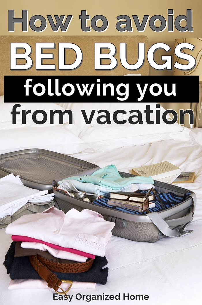 How to avoid bed bugs following you home from vacation - avoid bed bugs when traveling by following these simple steps #bedbugs