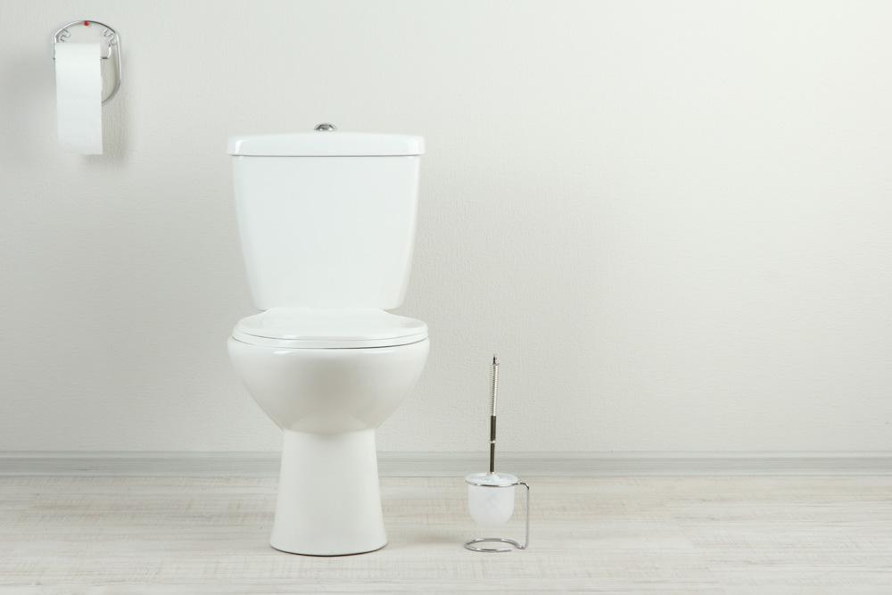Toilet Smells